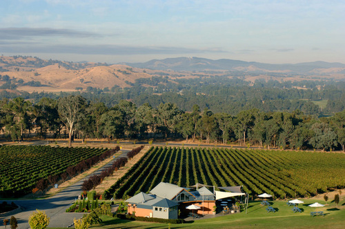 Gapsted Wines